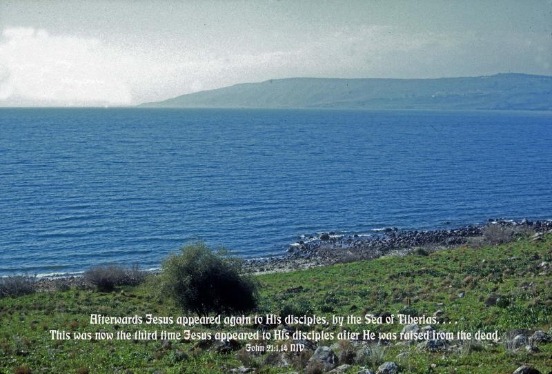 By Blue Galilee - John 21