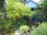 Stuart T's Essex Garden (UK)