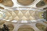 Ceiling of Antwerp Cathedral