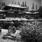 temple04jpg.jpg