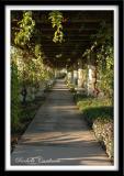 Balboa Park Walkway