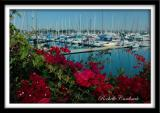 Marina and Floral Frame