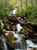 Alarka Falls 5