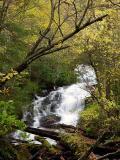 Alarka Falls 6