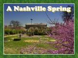 Nashville in the Spring
