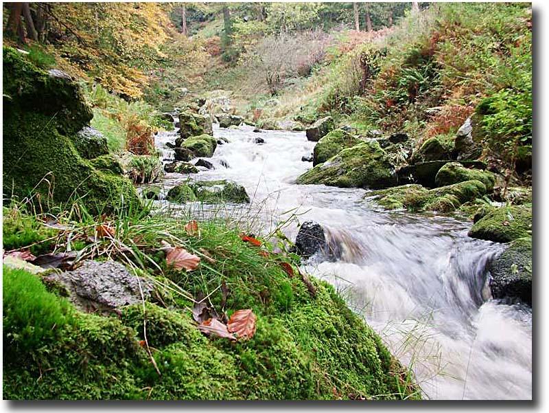 Waterfall_0095