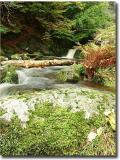 Waterfall_0051_shrunk copyjpg022.jpg