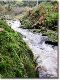 Waterfall_0091