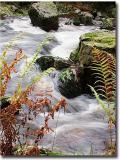 Waterfall_0101