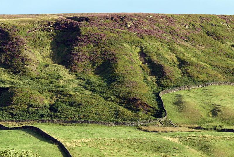 Hillside texture