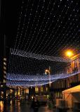 Newcastle Christmas decorations