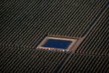 North California farming