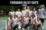 Tornado Alley Cats 2005 115x.JPG