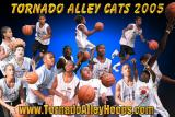 Alley Cats 2005 Rec League.JPG