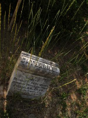 Untended grave, Fairview Cemetery, Santa Fe, New Mexico, 2005