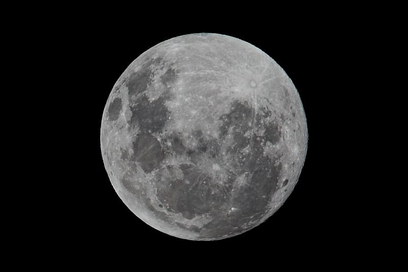 Night Moon - 2