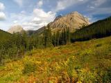 Highwood Pass 3