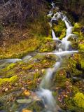 Autumn Mountain Stream