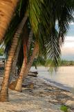 Bahía Cochinos y Cienfuegos