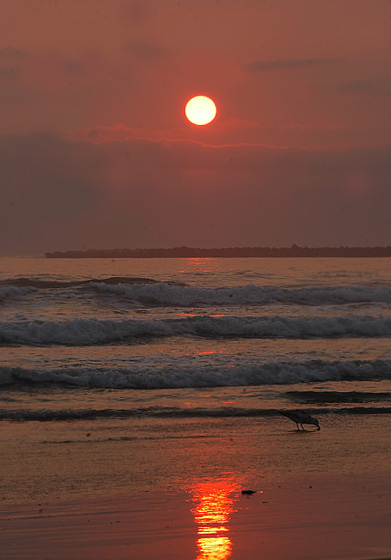 South Beach Sunset - 9