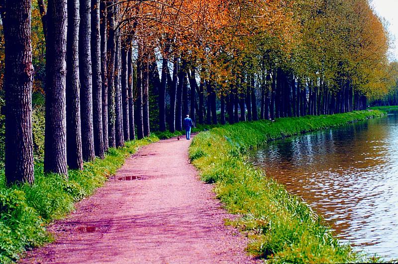 la marche le long de la rivière