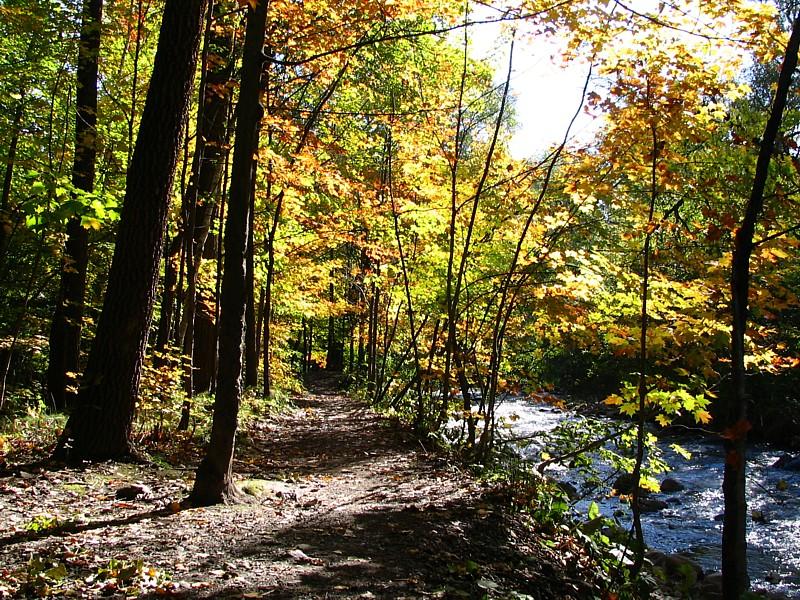 le sentier près de la rivière