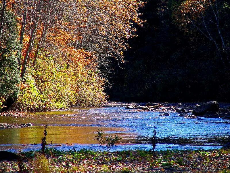 lautomne au bord de la rivière