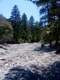 le ruisseau asséché
