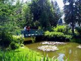 L'étang à l'entrée, l'été...
