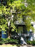 l'arbre contre la maison