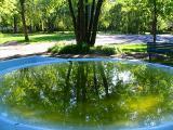 le reflet dans la fontaine