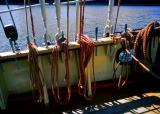 collection de cordages