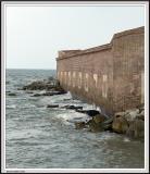 Sumter - IMG_2122 - Crop.jpg