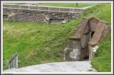 Moultrie - IMG_2250 - Crop.jpg