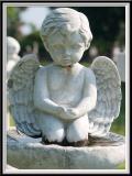 Magnolia Cemetery - IMG_2512 Crop.jpg