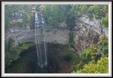 Falls Creek Falls - IMG_3405.jpg