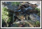 Piney Falls - IMG_3598.jpg