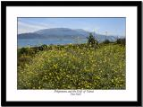 Pelopennese and Gulf of Patrai - A View from Mainland Greece