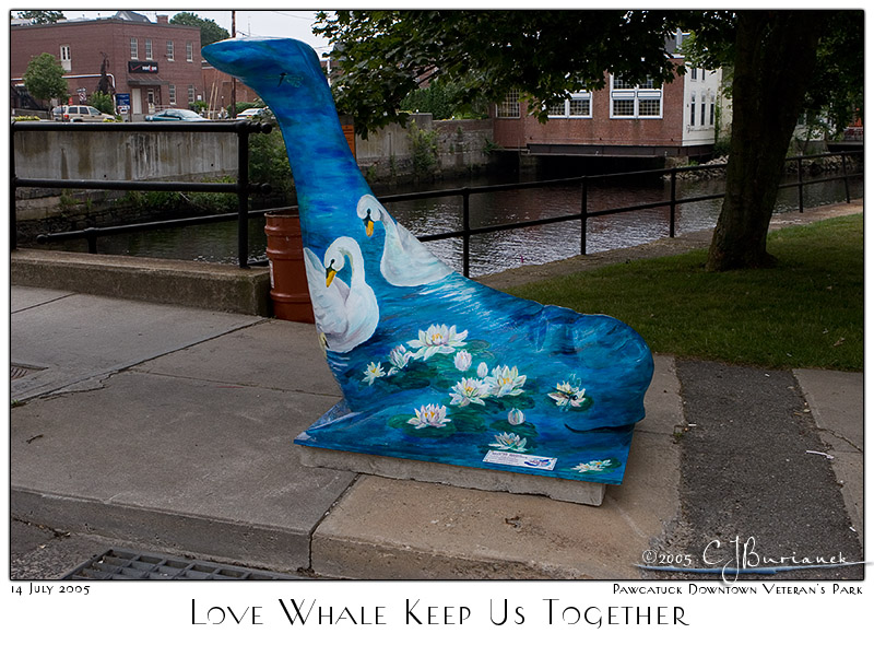 Love Whale Keep Us Together - 3203