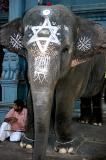 lakshmi, pondicherry