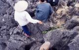 Vietnam (1999)