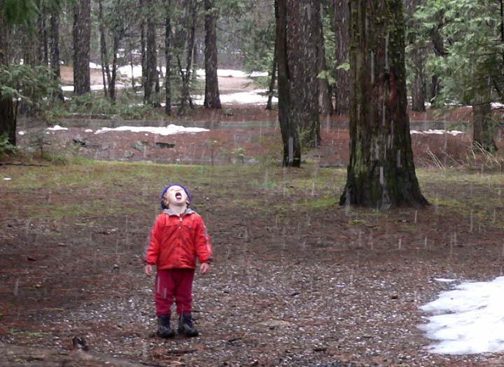 Rain or Snow?