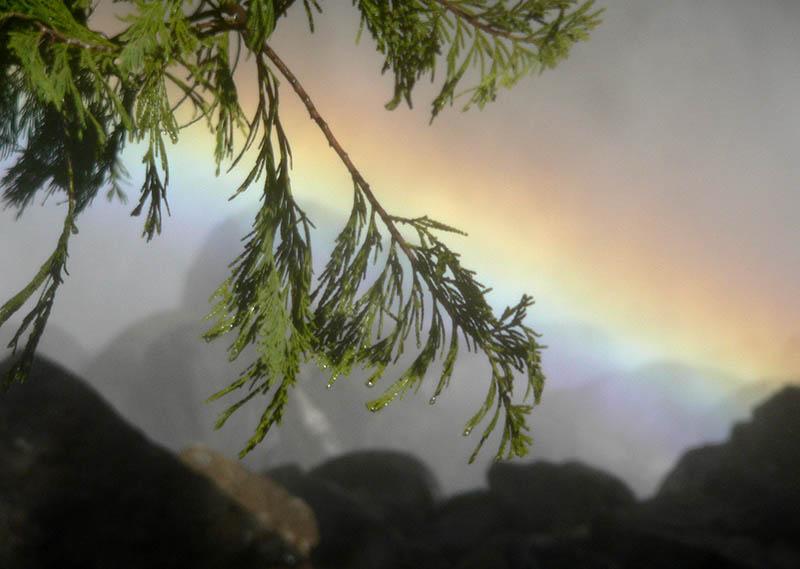 Drops and Rainbow