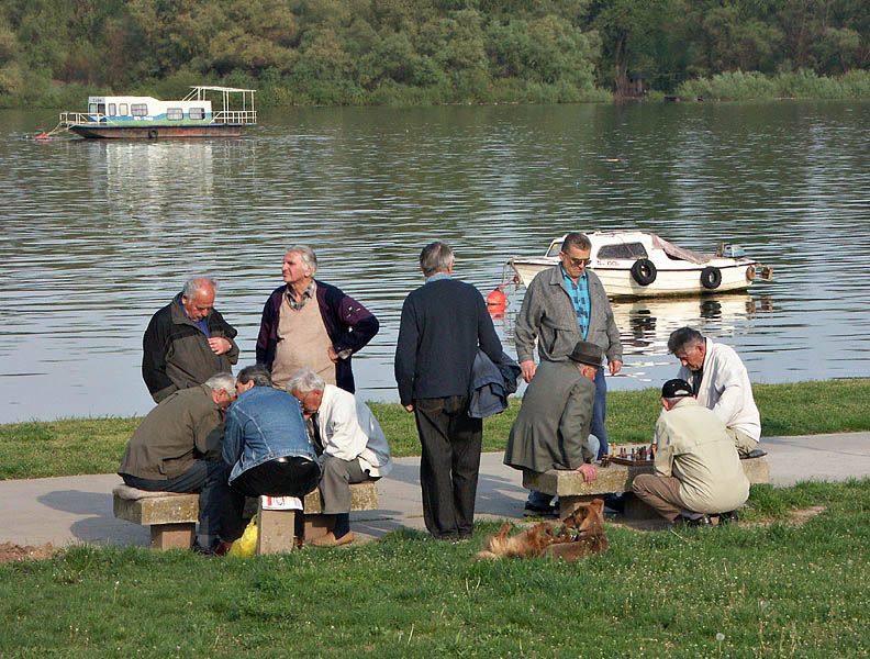 Chess by the Danube, Novi Beograd