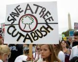 Save A Tree Cut a Bush