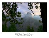 Half Dome Framed In Pine 2.jpg