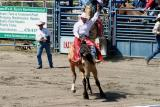rodeo_action