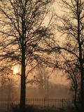 7/20/2005 Southern Sunrise