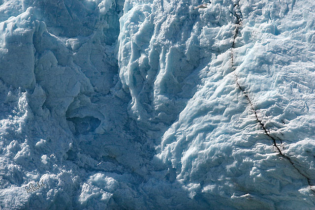 the Face of a Tidewater Glacier