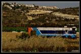 Train and Cotton Harvest.jpg